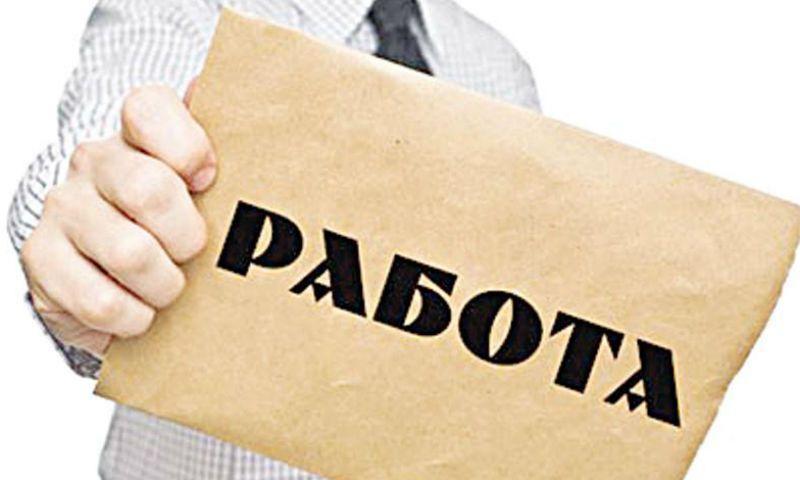 Директор тутаевского центра занятости рассказал о ситуации на рынке труда
